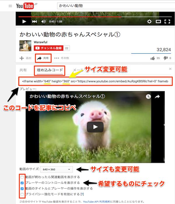 youtube_movieinsert