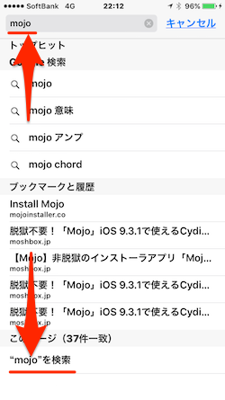 Safari_KeyWord_Search-02