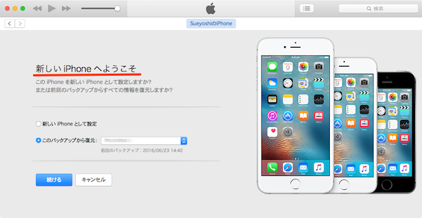 iPhone_Restore-01