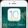 iOS1021Beta1