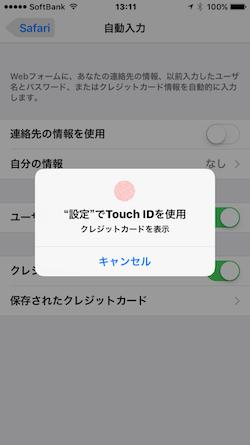 CreditCard_Safari-04