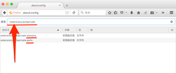 FirefoxAddon_AutoPrivate-03