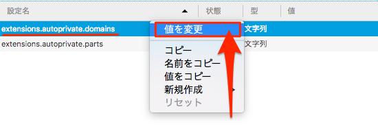 FirefoxAddon_AutoPrivate-04