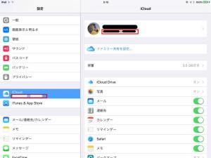 13_settei_iPad_ID