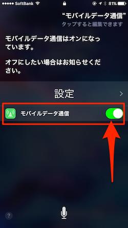 Siri_Bug-03