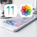 【iOS 11】iPhoneの写真アプリにある写真を手動で並び替える方法