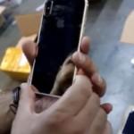 iPhone8のプロトタイプがドイツ税関で発見される