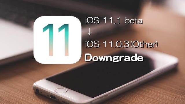 iOS111-iOS1103-Downgrade