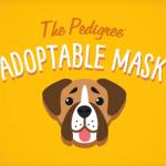 【Facebook】FacebookとPedigreeがカメラの「犬エフェクト」を使って里親探しができる取り組みを実施