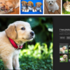 Firefoxで、Google画像検索で消えた[画像を表示]ボタンを復活、元に戻す方法は?