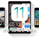Apple、iOS 11.2、iOS 11.2.1、iOS 11.2.2の署名(SHSH)発行を停止。iOS 11.2.5以外のダウングレードおよびインストールが不可能に