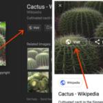 【Google】Googleの画像検索が使いにくくなった?今までのようにフルサイズ画像を見る方法