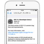 Apple、バッテリーを診断する「バッテリーの状態」機能を搭載したiOS 11.3 Beta 2を開発者向けにリリース。
