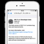 Apple、iOS 11.4.1 Beta 1を開発者向けにリリース。