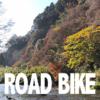【ロードバイク】チバニアンは燃えていた【紅葉】