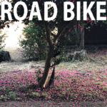 【ロードバイク】奈良の大仏と谷津道通行止め【ポタリング】