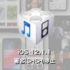 Apple、iOS 12.1.1の署名(SHSH)発行を停止。FaceTimeの盗聴バグに対処!?